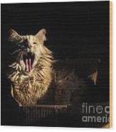 Tiger Yawn Wood Print