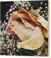 Tightly Wrapped Petals Wood Print by Tanya Jacobson-Smith