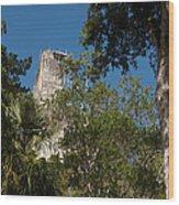 Tikal Pyramid 4a Wood Print