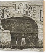 Timber Lake Lodge Wood Print