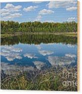 Timberland Lake Wood Print