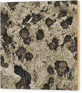 Time Holes - Sepia Tone - Wonderwood Collection - Olympic Peninsula Wa Wood Print