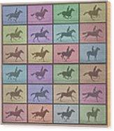 Time Lapse Motion Study Horse Color Wood Print