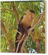 Time To Monkey Around Wood Print