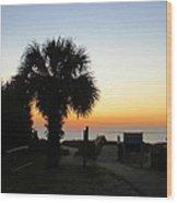 South Carolina Edisto Beach Wood Print by Ella Char