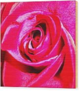 Timeless Red Rose Wood Print