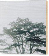Timor-leste Wood Print