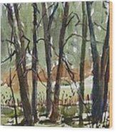 Tims Pond Wood Print