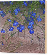 Tiny Blue Flowers Wood Print