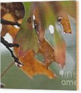 Tiny Leaf Wood Print