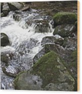 Tiny Waterfalls Wood Print