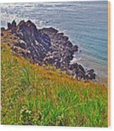 Tip Of Cape D'or-ns Wood Print