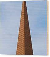 Tip Of The Tall Steeple Wood Print