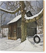 Tire Swing Shed Wood Print by Timothy Flanigan