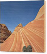 Tired Hiker Paria Wilderness Arizona Wood Print