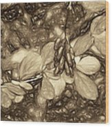 Tis The Season - Antique Sepia Wood Print