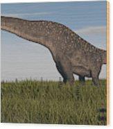 Titanosaurus Standing In Swamp Wood Print