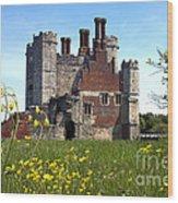 Titchfield Abbey Buttercups Wood Print