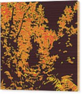 Titian Woodland Wood Print