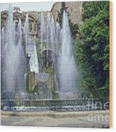 Tivoli Garden Fountain Wood Print