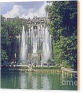 Tivoli Garden Fountain Reflection Wood Print