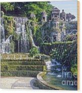 Tivoli Garden Fountains Wood Print