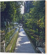 Tivoli Gardens Wood Print