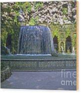 Tivoli Gardens Fountain And Pool Wood Print