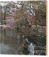 Tivoli Lake In Spring Wood Print