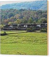 Tn Train Wood Print