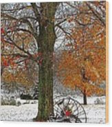 To Everything There Is A Season... Wood Print by Diane E Berry