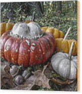 To Swell The Gourd Wood Print