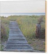 To The Beach Wood Print