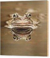 Toad Wood Print