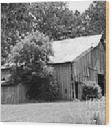 barn in Kentucky no 10 Wood Print