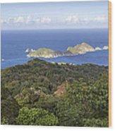 Tobago Rainforest Wood Print