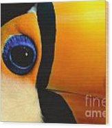 Toco Toucan Face Wood Print