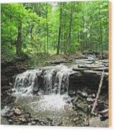 Toenissen Falls Wood Print