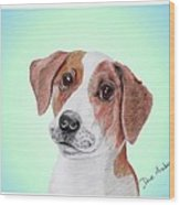 Toffee - A Former Shelter Sweetie Wood Print