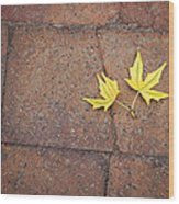 Together Yellow Maple Leaves Wood Print
