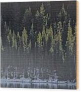 Toiga Lake Wood Print