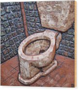 Toilet Stories #6 Wood Print by Carlos Enrique Prado