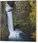 Toketee Waterfall Wood Print