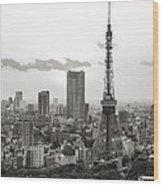 Tokyo Tower And The Zozo-ji Temple Wood Print
