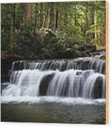 Tolliver Falls Maryland Wood Print