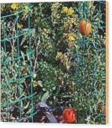 Tomato Garden. Wood Print