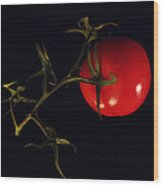 Tomato With Stem Wood Print