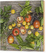 Tomatoes And Herbs Wood Print by Elena Elisseeva