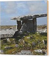 Tomb In Ireland Wood Print