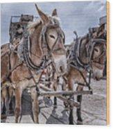 Tombstone Mules Wood Print
